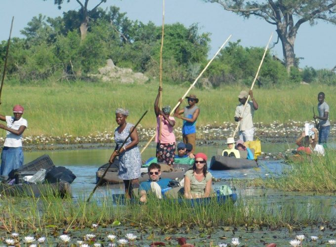 African Safari Holiday Bookings Combined